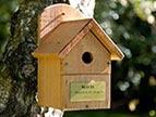 Memorial Bird Box